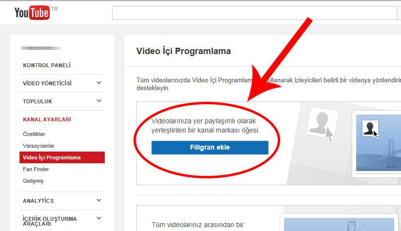 videologo5
