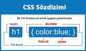 CSS Dersleri - 3 || CSS Seçiciler